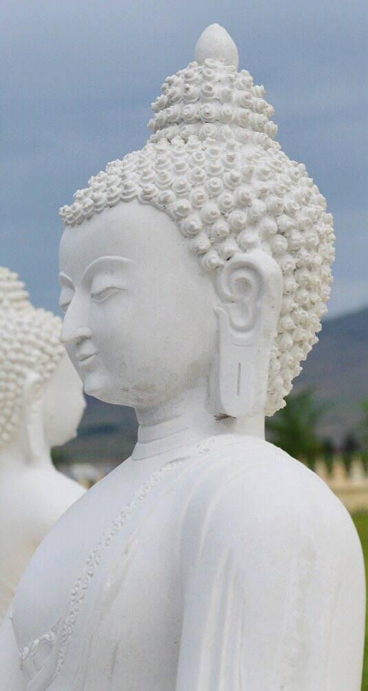 buddhas_cr_rs